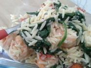 Shrimp and Orzo