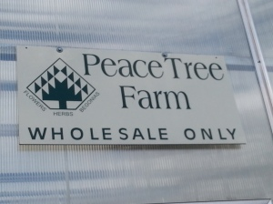 Peace Tree Farm
